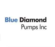 BLUE DIAMOND PUMPS